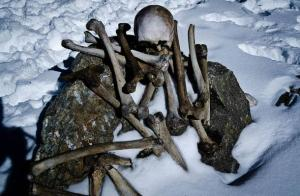 Human-skeleton-found-at-Roopkund-Lake