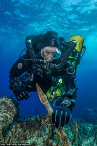 Diver with the tip of the bronze spear recovered last year. Part of the new statue? Credit: WHOI